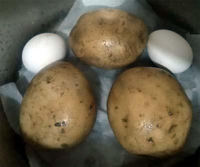 馬鈴薯鮪魚蛋沙拉1