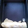 海苔起司蛋捲3