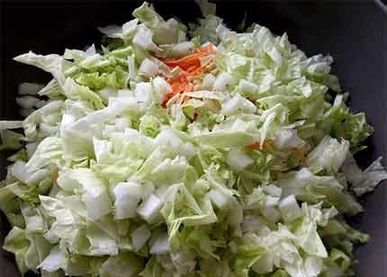 雞肉白菜千層麵1