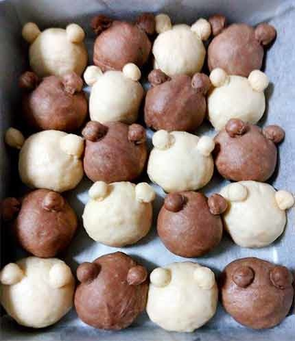 雙色泰迪熊鮮奶油餐包5