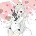 TINA兔