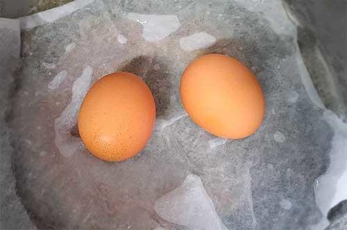 咖哩雞蛋帕尼尼1.jpg