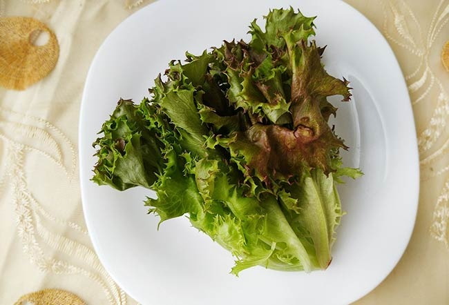 水耕蔬菜6.jpg