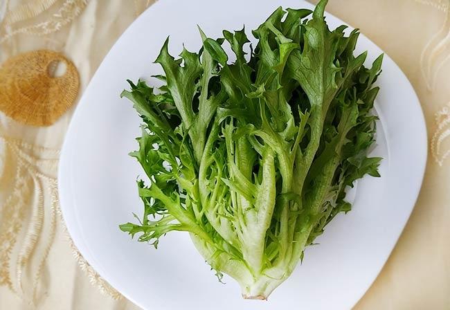 水耕蔬菜4.jpg