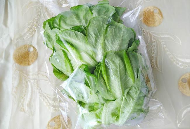水耕蔬菜2.jpg