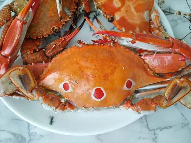 萬里蟹6.jpg