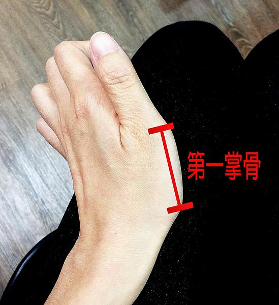 第一掌骨2