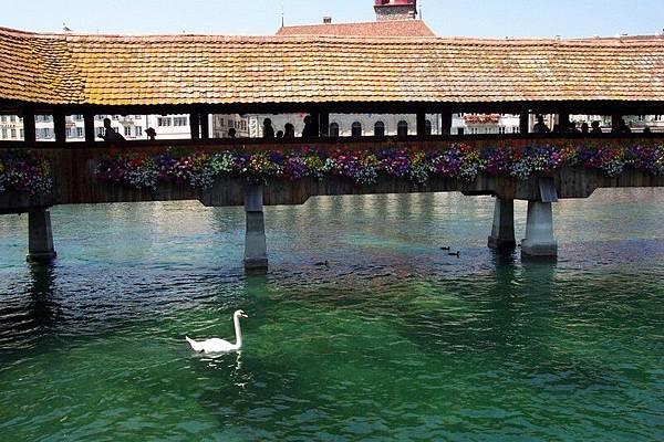 琉森 Luzern 卡貝爾橋