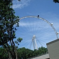 明年開放的新加坡摩天倫