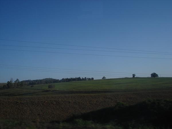 昆士蘭廣大的農田