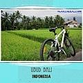 ubud1.001.jpg