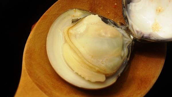 大蛤蠣 景美美食初二十六火鍋店