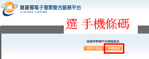 電子發票整合服務平台畫面