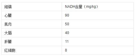 人體器官的NADH含量