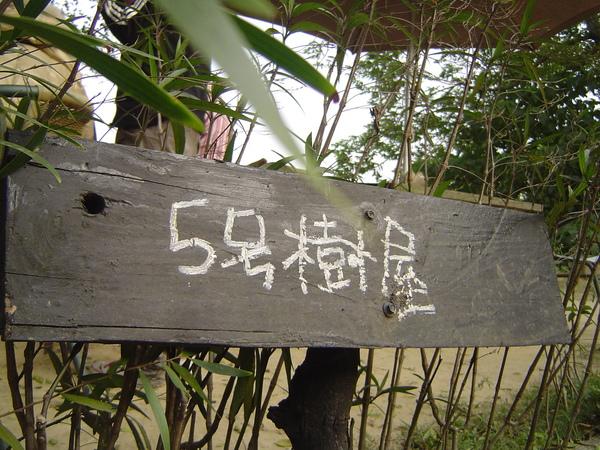 4.5號樹屋.JPG