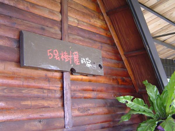 13.5號樹屋.JPG