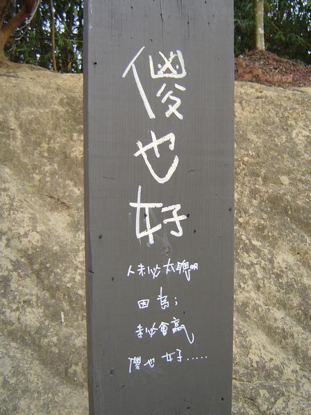 23.5號樹屋.JPG