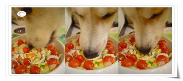 熊的生日大餐3.jpg