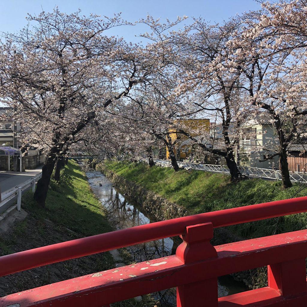 東京自由行 (15).jpg