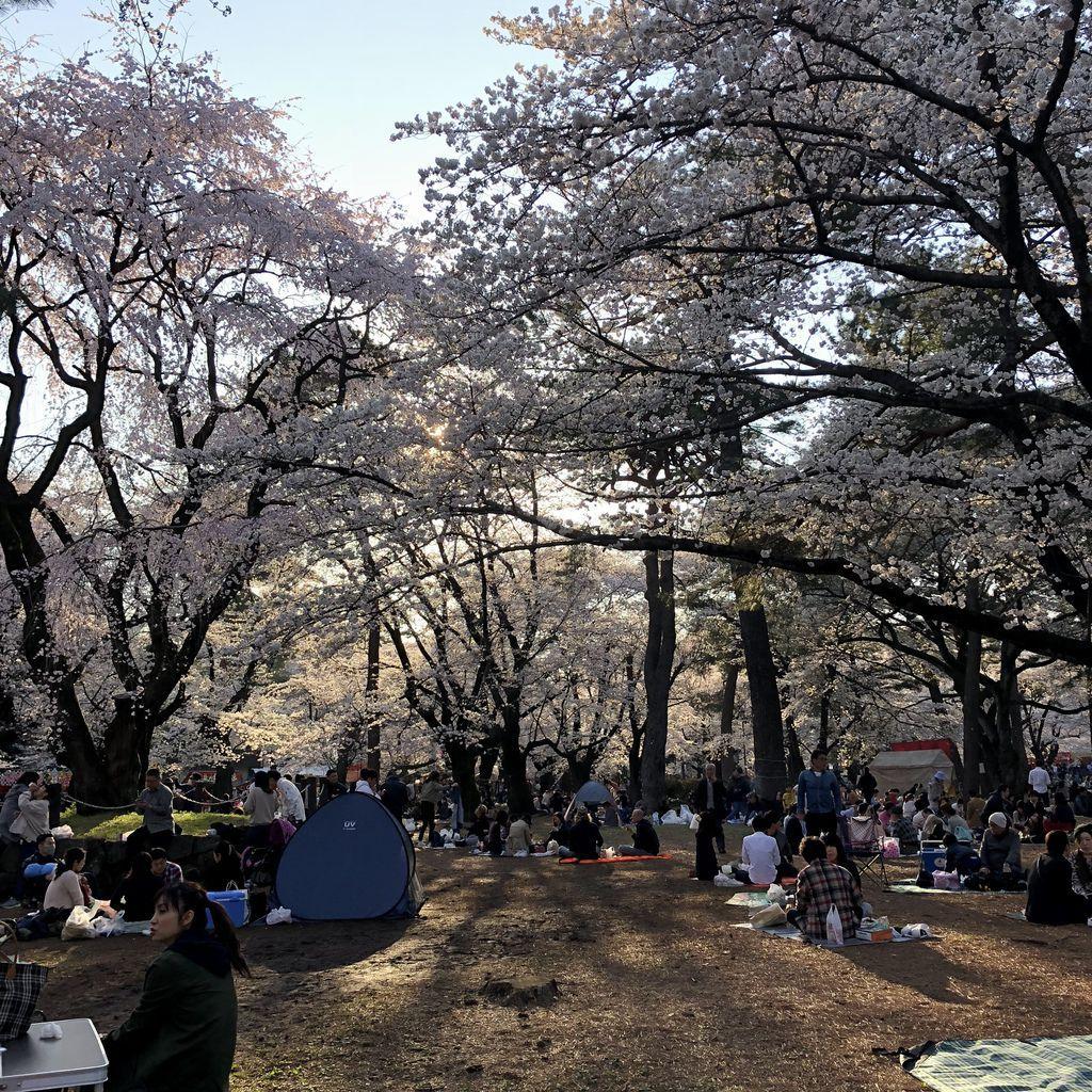 東京自由行 (22).jpg