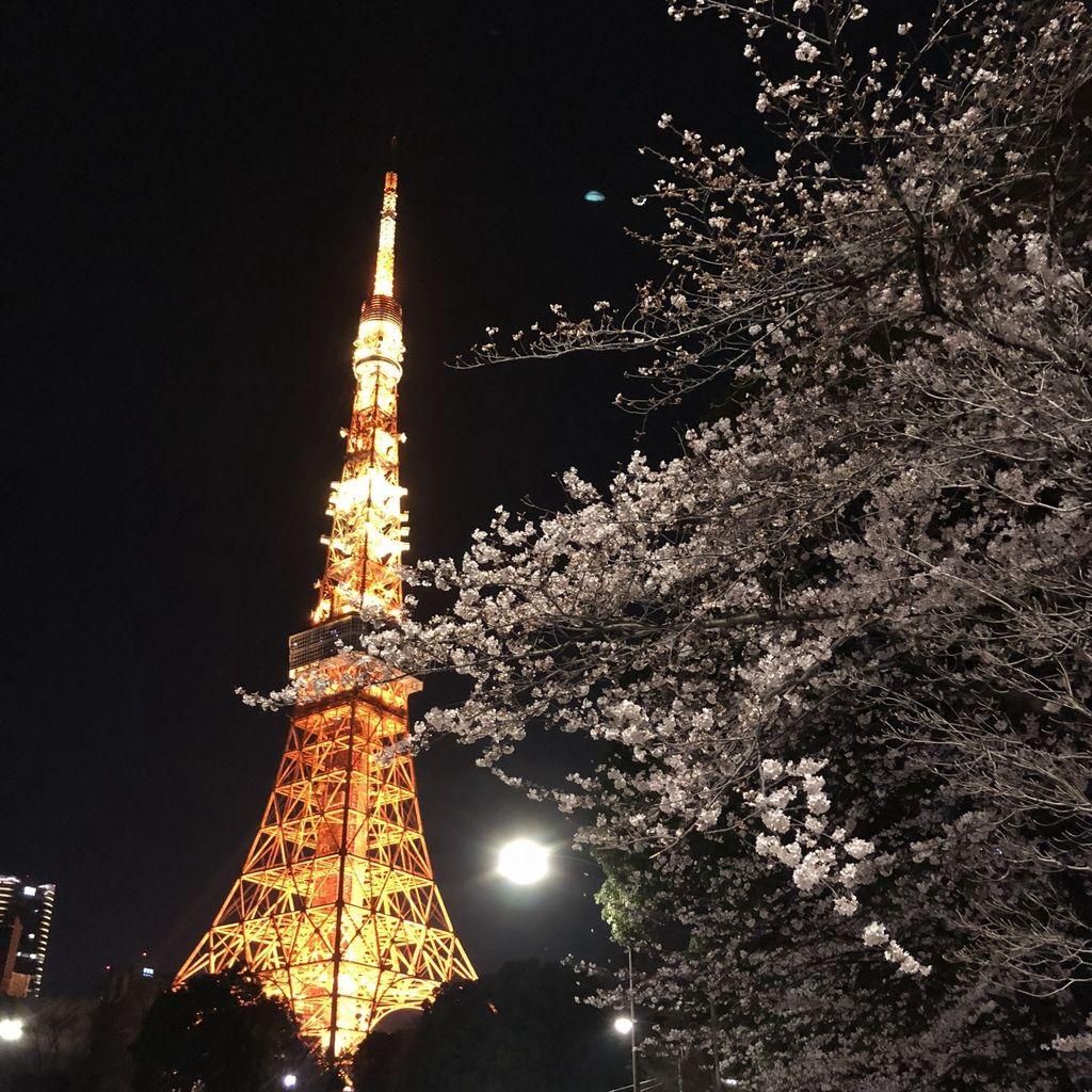 東京自由行 (40).jpg