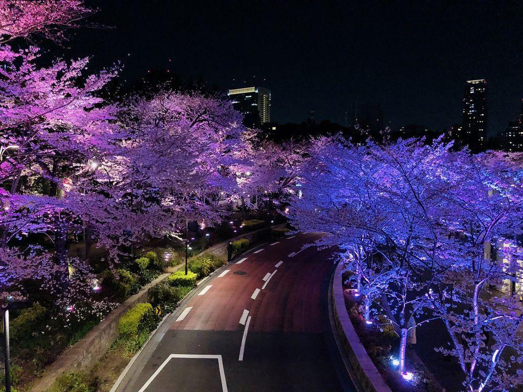 東京自由行 (45).jpg