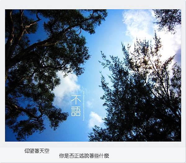 鏡頭1000922-1.JPG