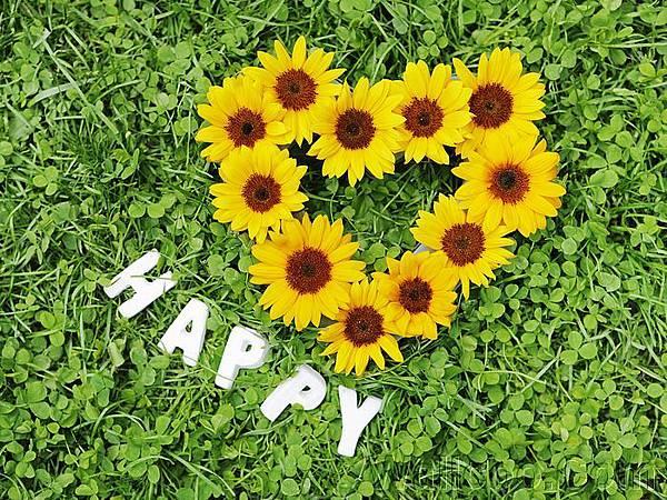 Romantic_Events_Flowers_photo_082.jpg