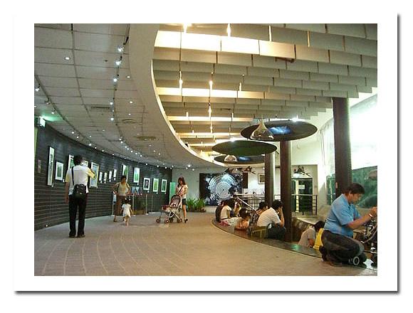 亞馬遜河魚類展示廳.jpg