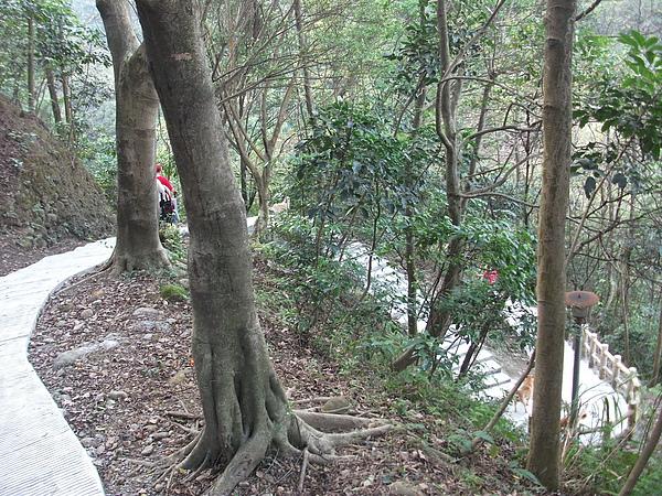 青年公園登山道2.JPG