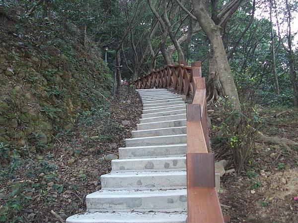 青年公園登山道.JPG