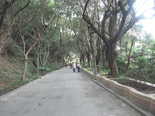 青年公園步道.JPG