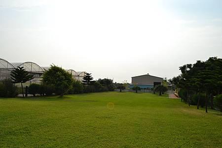 DSC_0735.JPG