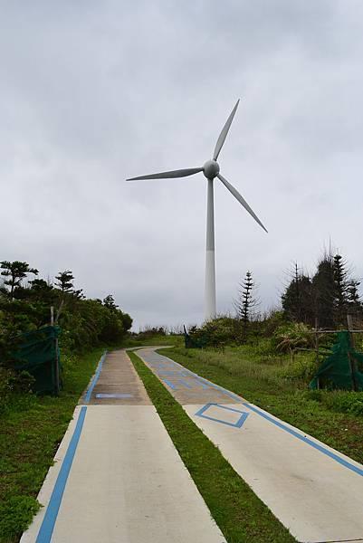 DSC_0961中屯風車