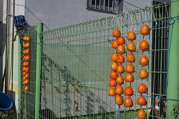 IMG_0117_D2_半日遊_加德島壁畫村.JPG