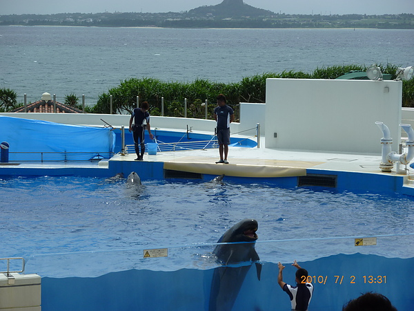 P1020446海豚秀.JPG