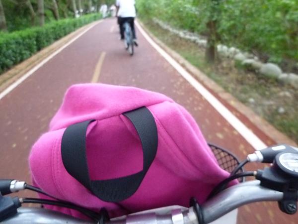 P1050957東豐腳踏車 一開始還很嗨`都下坡.JPG