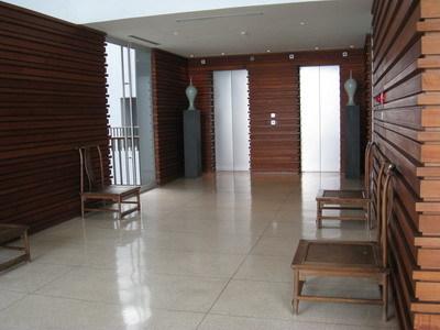 VIP的電梯入口處(我猜的)