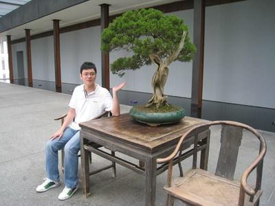 老爺跟樹合照