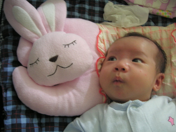 滿月前09--咦?兔兔睡著囉