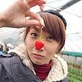 草莓鼻突然很受歡迎01