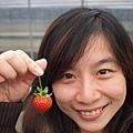 大家都要和草莓來一張~01