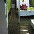 水中的展場 15cm