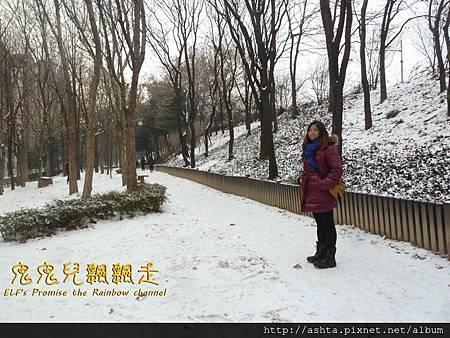 140121 SM新大樓對面的公園都是雪