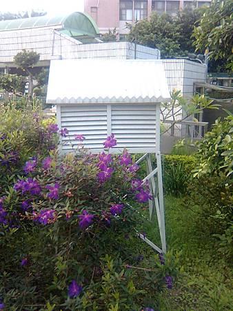 天氣百葉箱
