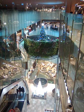 20121224聖誕樹-4