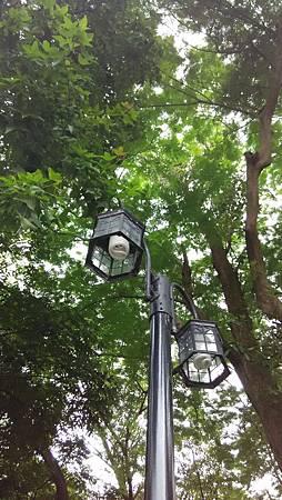 20150722路燈