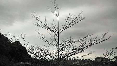 20160321天空-3