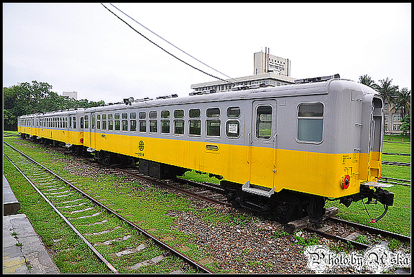 DSC_5077.jpg