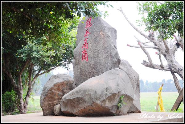 06 龍岡大草坪.jpg